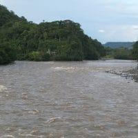 Amazon Tributary Ecuador