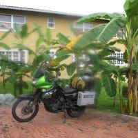 Bike And Banana Trees
