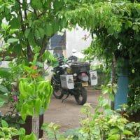Bike In Arbor
