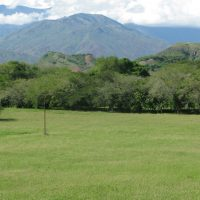 Meadow Colombia