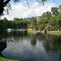 Parque Jipiro 2