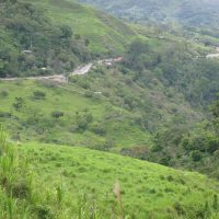 Road In Colombia